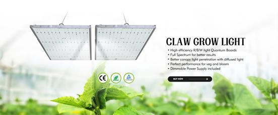 panel grow light-2.jpg
